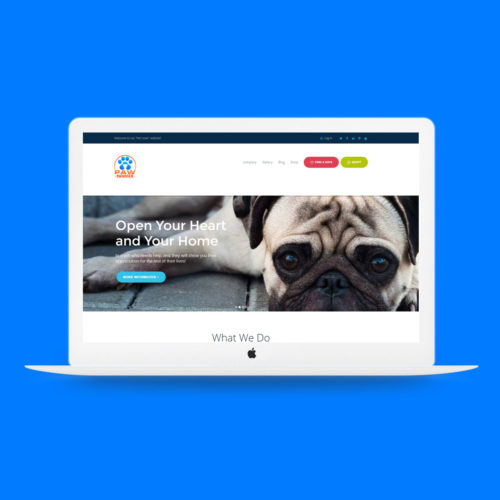 Paw-swagger-website-development